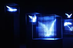 Another LED one - this time, sculpture by Japanese artist Makoto Tojiki.