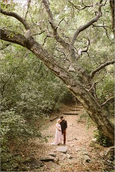 Oak Canyon Nature Center Maternity Photography Session Photographer Baby Photo Session Orange County Maternity Photographer Baby Photographer Anaheim Hills Photographer-2