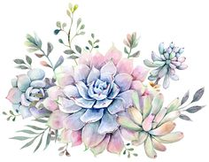 succulent watercolor 1 Art Print by Cali Dalle. Worldwide shipping available at Succulents Drawing, Watercolor Succulents, Watercolor Flowers, Succulents Art, Watercolor Print, Watercolor Illustration, Watercolor Paintings, Succulent Tattoo, Islamic Art