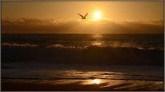 Fonds d'écran Nature > Fonds d'écran Couchers et levers de Soleil Wallpaper N°366328 par gilles40 - Hebus.com