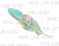 Bird Feather 7 Watercolor Clipart Illustration by BackLaneArtist