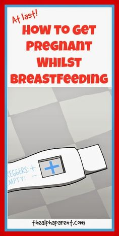 The Alpha Parent: How to Get Pregnant Whilst Breastfeeding