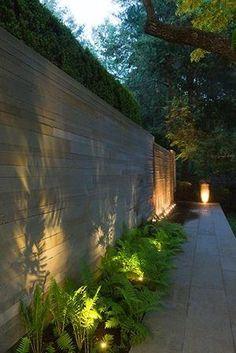 Verlichting in de tuin: aanlichten van specifieke planten langs een pad.