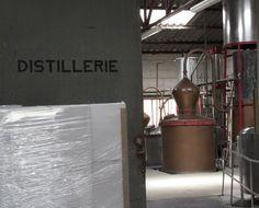 Manguin Distillery #
