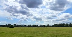 August 9th: British countryside: cows grazing underneath a big East Anglian sky - Photo by QueenHare for the Design Every Day Project
