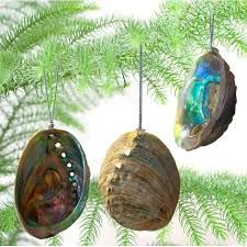 Image result for kiwi christmas decorations
