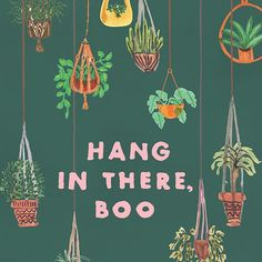 Hang in there boo. Print now available in our print shop. #jungalowstyle