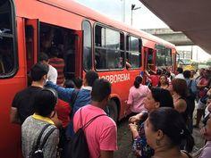 Blog do Oge: Ônibus do Grande Recife começam a ser equipados co...