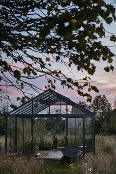 Greenhouse from Willab Garden. Green Plants, Terraces, Garden, Outdoor Decor, Decks, Garten, Lawn And Garden, Terrace, Gardens