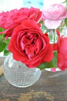 #2Flowergirls Rosen aus dem Garten  happyhomeblog 007