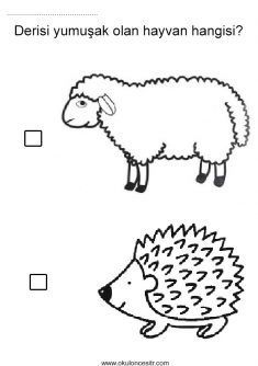 Sert Yumuşak Kavramı, hard soft worksheets and coloring pages Preschool Worksheets, Preschool Activities, Prepositions, Science, Coloring Pages, Diy And Crafts, Bible, Printables, Kids