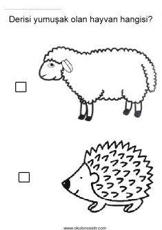 Sert Yumuşak Kavramı Hard Soft Worksheets And Coloring Pages
