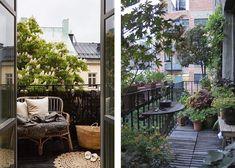 Mit Größeren Pflanzen Den Balkon Gestalten