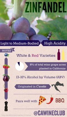 Here are some facts that you may not know about Zinfandel! #wine #zinfandel #zinfandelfacts