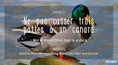 French Idioms - Duck