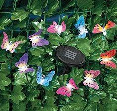 Butterfly Light Set @ Harriet Carter $14.98