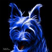 Blue Australian Terrier - 6500 - Animal Artist James Ahn