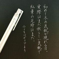 今日は立冬だそうです。 . . #つっても結構寒い #そして結構紅葉してる #立冬#冬 #字#書#書道#ペン習字#ペン字#ボールペン #ボールペン字#ボールペン字講座#硬筆 #筆#筆記用具#手書きツイート#手書きツイートしてる人と繋がりたい#文字#美文字 #calligraphy#Japanesecalligraphy