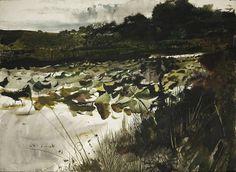Lillypads by Andrew Wyeth w