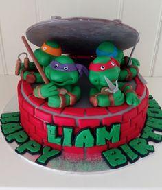 Turtle Birthday Parties, Ninja Turtle Birthday, Saree Dress, Cakes For Boys, Superhero Party, Teenage Mutant Ninja Turtles, Birthday Cakes, Presents, Desserts
