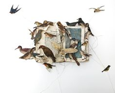 louise richardson artist | louise richardson no doubt loves books and flying.