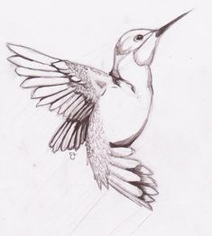 Drawings birds humming bird sketch on deviantart Bird Drawings, Easy Drawings, Animal Drawings, Drawing Sketches, Sketching, Drawing Birds Easy, Flying Bird Drawing, Bird Flying, Animal Sketches