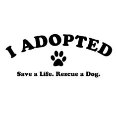 Save A Life. Rescue a Dog. For the rest of my days, shelter dogs. All the way.
