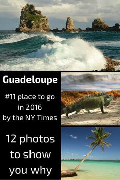 Best of photos from the Guadeloupe islands in the Caribbean- NYT place to go in 2016