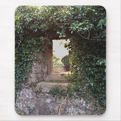 Side Window at West Kirk Culross Mouse Pad - How about this cool TV series period piece Outlander? Gotta love it. Outlander Casting, Outlander Tv Series, Caitriona Balfe Outlander, Drums Of Autumn, Side Window, Custom Mouse Pads, Filming Locations, Corner Designs, How To Dry Basil