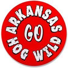 Arkansas Razorbacks Billiard Table Felt 000 Amp Pool Cloth