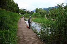 Minghu Wetland Park by Turenscape 16 « Landscape Architecture Works | Landezine