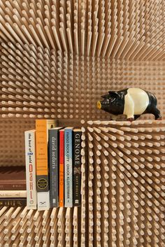 Modern wooden peg board bookshelf