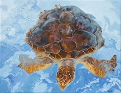 "Oil painting, 11x14"". I painted this from reference photos I took of rescued turtles at Loggerhead Marine Center, Jupiter, FL."