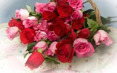 Preview wallpaper roses, flowers, lot, basket