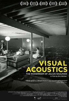 Visual Acoustics Movie Poster (11 x 17)