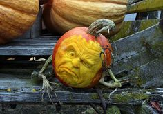 Creative Pumpkins by Villefen Ray