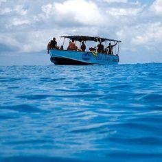 Pronti per le immersione 😍😍 ••• Follow me on my personal account @ivanmosetti @damianodinuzzo ••• 📍: #Zanzibar #Africa 📸 by: @ivanmosetti #me ••• Tag your photo with hashtag#IvanMosetti the most beautiful will be repost in this page Follow @ivanmosetti.travel for see how much it's beautiful the us earth Leggi il mio blog e le mie esperienze www.ivanmosetti.com (link in bio) ••• #Travel #Adventure #iof2k16 #Love #Adventurous #Travelgram #Adventures #Traveling #Travelling #Trip #Nature…