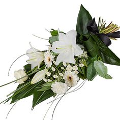 Petite White Lily Sheaf - delivered next day White Carnation, White Lilies, Funeral Floral Arrangements, Flower Arrangements, International Flower Delivery, Green Bear, Simple Rose, Funeral Flowers, Local Florist