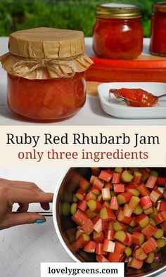Ruby Red Rhubarb Jam Recipe-- I really like how easy this recipe sounds. Will be picking up some pectin soon as I have never heard of jam sugar. But I like the small amount, and very straight forward. Rhubarb Desserts, Rhubarb Jam Recipes Canning, Rhubarb Freezer Jam, Rhubarb Preserves, Healthy Rhubarb Recipes, Sugar Free Rhubarb Recipes, Rhubarb Ideas, Rhubarb Chutney, Rhubarb Syrup