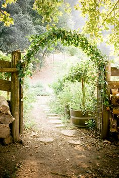 Rustic fence with green arch. summer in st. helena: tres sabores winery.