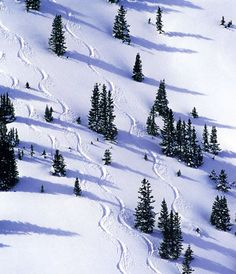 Winter Park...it really should be a picture of a bunny slope, the shops or my terrified ski instructor ;0