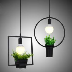 See related links to what you are looking for. Chandelier Creative, Industrial Chandelier, Hanging Chandelier, Chandelier Lighting, Pendant Lights, Black Metal, Pots, Pot Plante, Plant Lighting