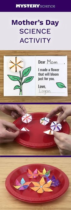 In this mini-lesson, students learn how the unique properties of water help flowers bloom in the spring. Science Projects For Kids, Science For Kids, Elementary Science, Mother's Day Activities, Sunday School Activities, Cool Science Experiments, Science Fair, Education And Development, Mystery Science