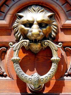 Door Knocker, Barcelona, Spain, photo by Arnim Schulz Door Knobs And Knockers, Knobs And Handles, Door Handles, Cool Doors, Unique Doors, Portal, Sculptures, Lion Sculpture, Door Detail