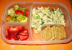 Yummy Lunch Box Gallery - Easy Lunch Boxes, Bento Lunches : Photo Keywords : healthy meal ideas : Light and healthy lunch! | SmugMug