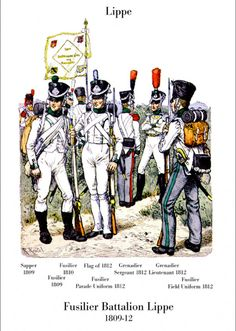 Lippe Fusiliers battalion 1809-13. From left to right: Minesweeper (1809), (1809) fusilier, fusilier (1810), Ensign (1812), Sergeant grenadier (1812), Lieutenant grenadier (1812), fusilier (1812).