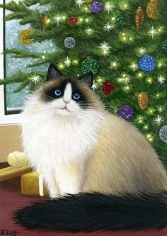 Ragdoll cat Christmas tree holiday limited edition aceo print art by B. Voth