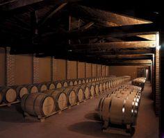 Barriles en #DehesaDeCadozos  Wine barrels in #DehesaDeCadozos