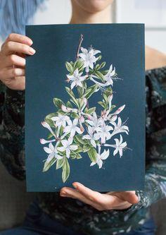 Botaniczne retro plakaty do druku! Kolejna niezwykła strona muzeum z darmowymi zasobami • MAVELO Graphics, Retro, Prints, Diy, Ideas, Graphic Design, Bricolage, Do It Yourself, Printmaking
