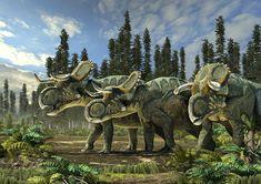 Nasutoceratops tittusi. Art by Román García Mora.